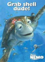 finding-nemo-grab-shell-dude-490091